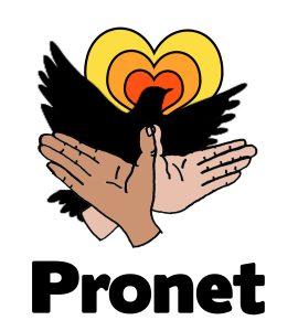 pronet icon